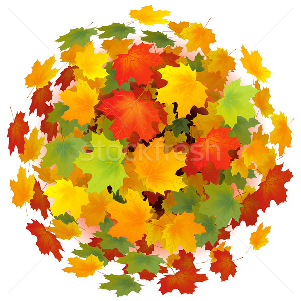 Vector Leaves Sphere Stock photo © dashadima