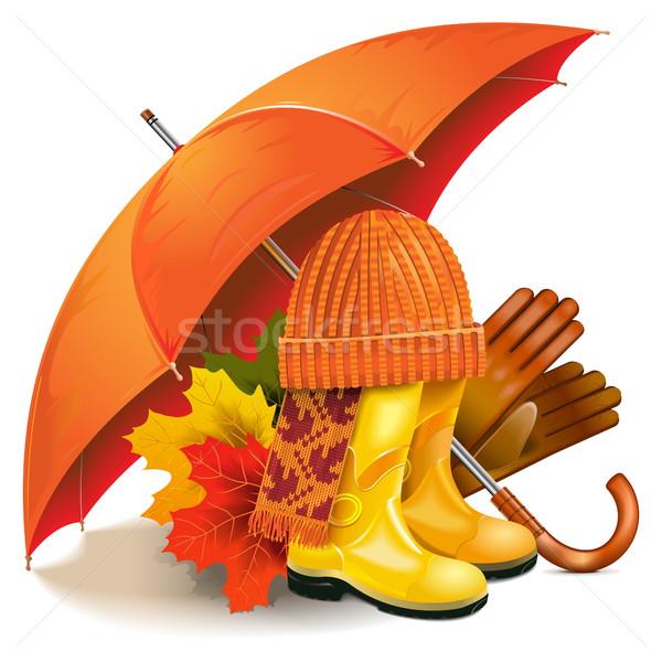 Wektora jesienią odizolowany biały pomarańczowy pozostawia Zdjęcia stock © dashadima