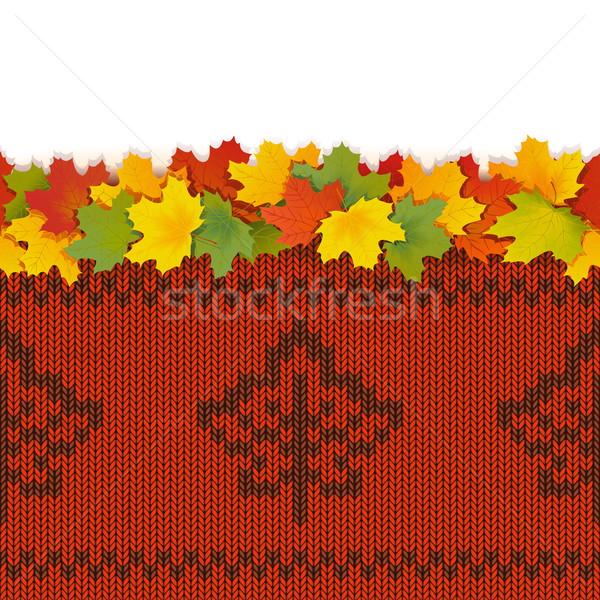 Vektor juhar levelek ősz kötött minta Stock fotó © dashadima