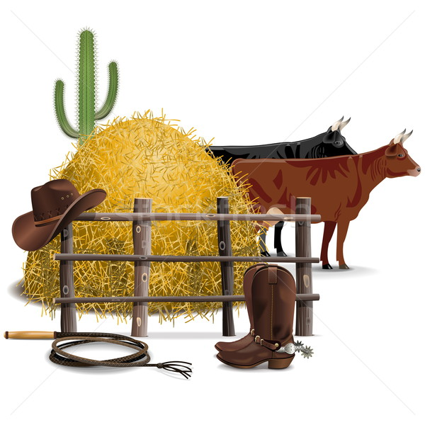 Vector Cowboy Farming Concept Stock photo © dashadima
