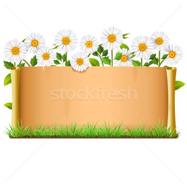 Vetor rolar isolado branco flores papel Foto stock © dashadima