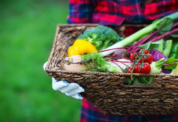 Nő visel kesztyű friss zöldségek doboz kezek Stock fotó © dashapetrenko