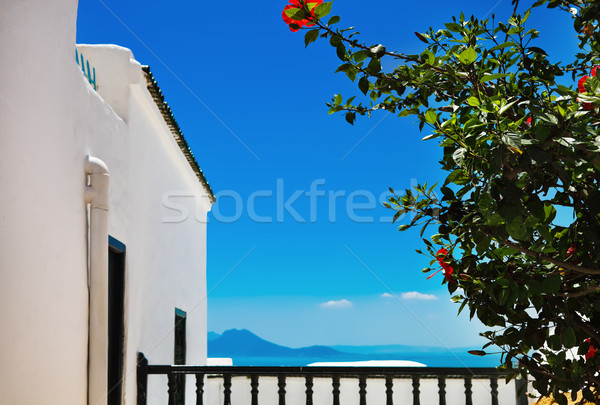 Тунис белый синий города небе Сток-фото © dashapetrenko