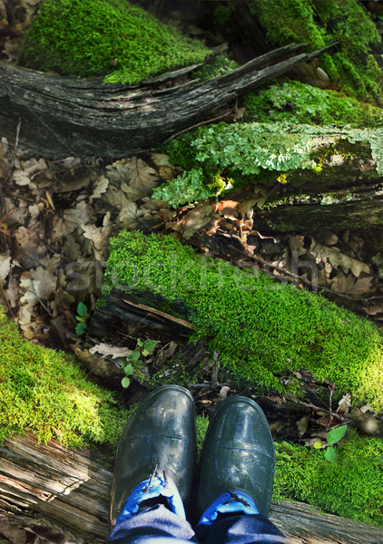 Rubber boots on the moss background Stock photo © dashapetrenko