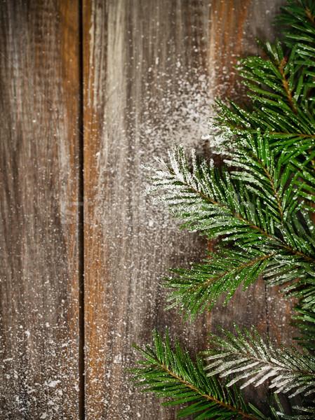 Christmas fir tree covered with snow  Stock photo © dashapetrenko