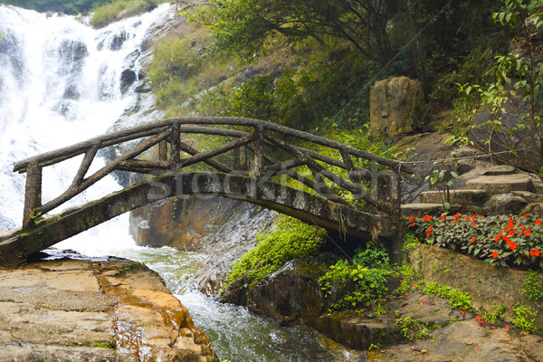 Bridge in the mountain forest Stock photo © dashapetrenko