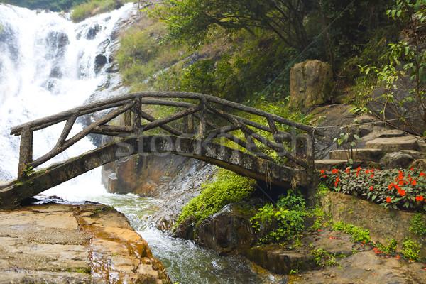 Foto d'archivio: Ponte · montagna · foresta · legno · vicino · acqua