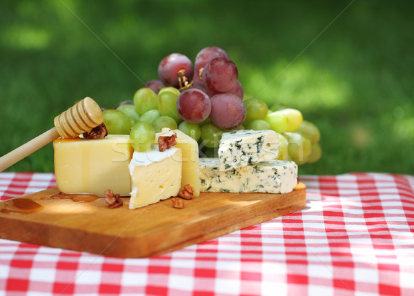 Various sorts of cheese with grapes Stock photo © dashapetrenko