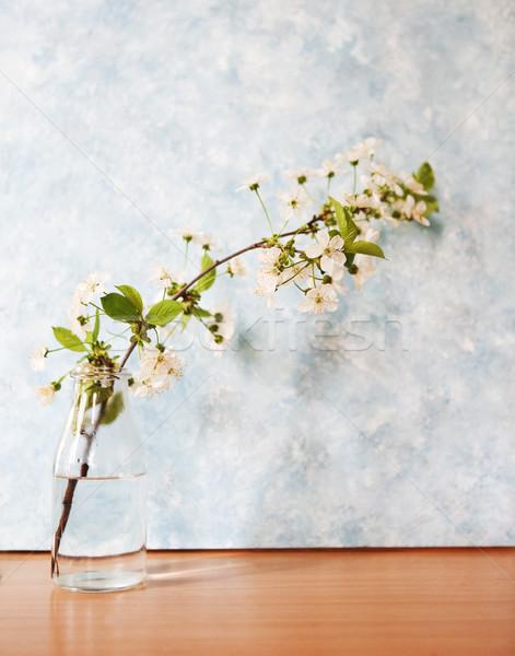 Beautiful spring flowers design background  Stock photo © dashapetrenko
