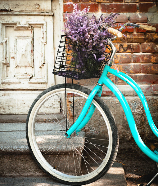 Vintage bycycle with basket with lavender flowers near the woode Stock photo © dashapetrenko