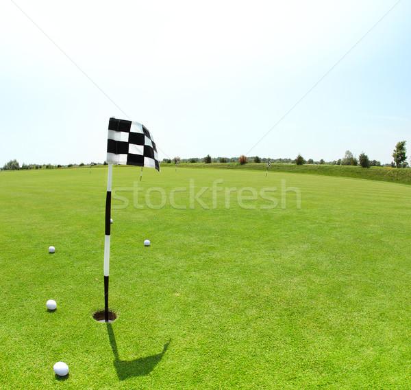 Vert golf pavillon été temps golf Photo stock © dashapetrenko