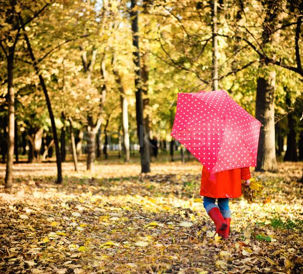 Kislány pöttyös esernyő sétál sikátor ősz Stock fotó © dashapetrenko