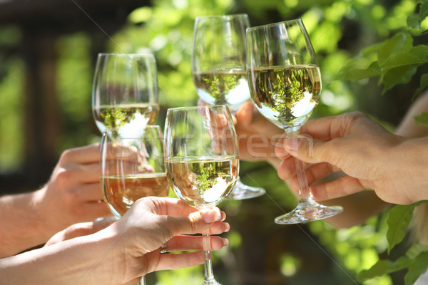 People holding glasses of white wine making a toast Stock photo © dashapetrenko