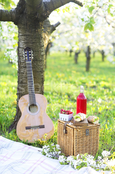 Guitar, basket, sandwiches, plaid and juice in a blossoming gard Stock photo © dashapetrenko