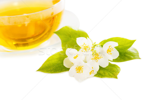 Cup of the jasmin tea isolated  Stock photo © dashapetrenko