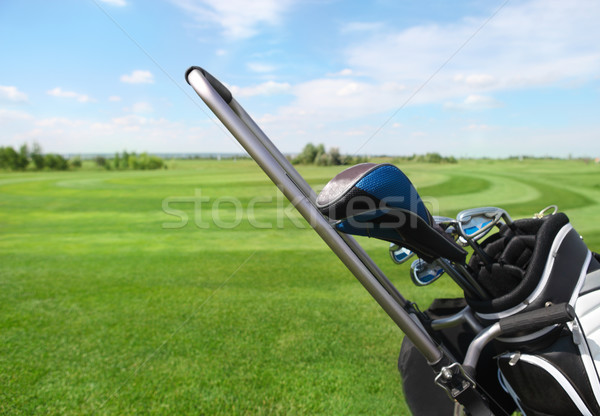 Golfütők zöld fű sport klub táska viselet Stock fotó © dashapetrenko