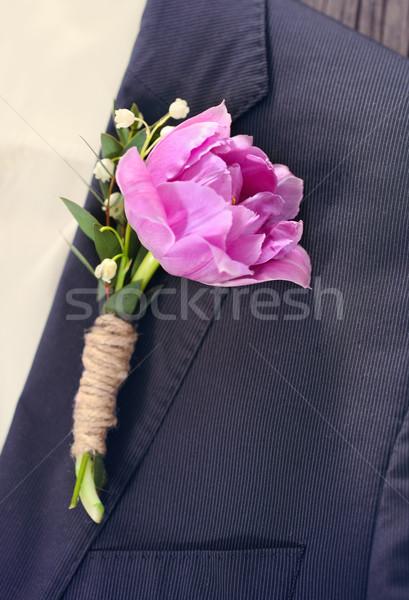 Stockfoto: Bruidegom · paars · tulp · knoopsgat