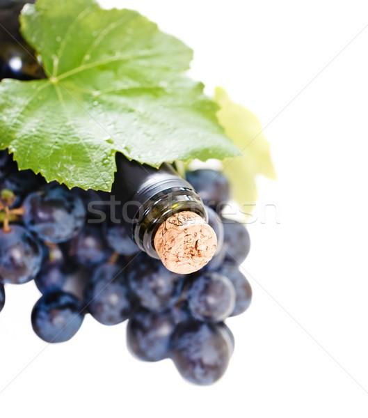Bottle of wine on the white background  Stock photo © dashapetrenko