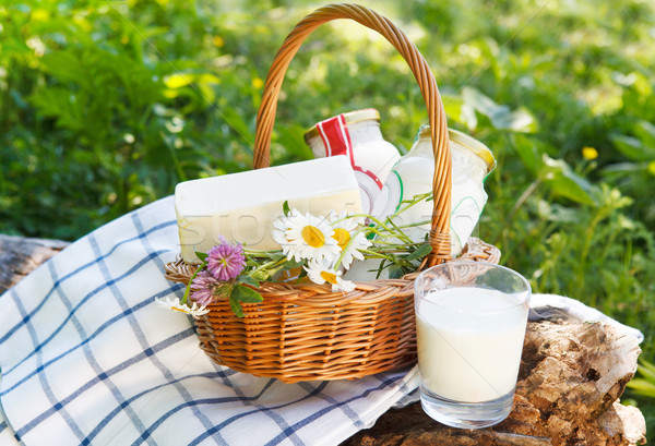 Different milk products: cheese, cream, milk Stock photo © dashapetrenko
