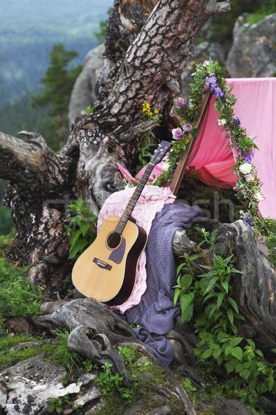 Romântico decoração montanhas guitarra casamento árvore Foto stock © dashapetrenko