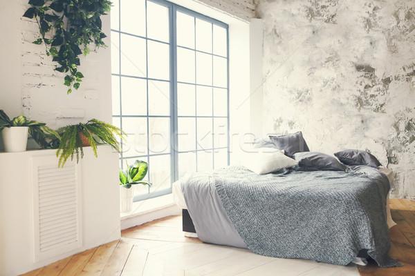 Moderna dormitorio gris almohadas plantas fondo Foto stock © dashapetrenko
