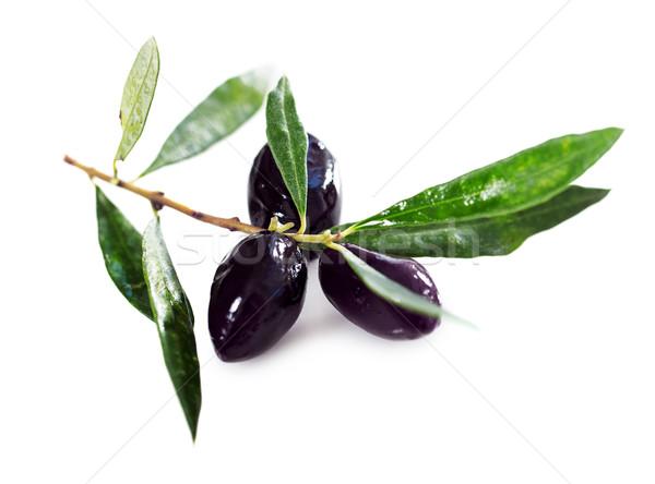 Maduro aceitunas negras hojas blanco negro de oliva Foto stock © dashapetrenko
