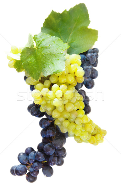 Bunches of a grapes and wine leaves Stock photo © dashapetrenko