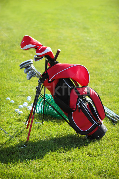 Golf clubs in golfbag, green grass background Stock photo © dashapetrenko