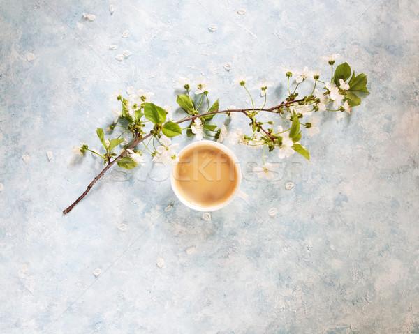 Beker zwarte koffie witte bloemen bloesem tak Stockfoto © dashapetrenko