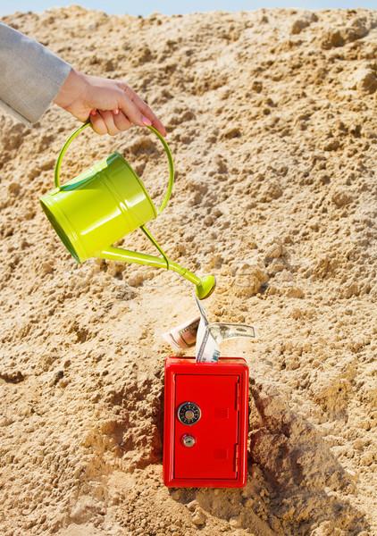 Businesswoman watering a money in safe in a desert Stock photo © dashapetrenko