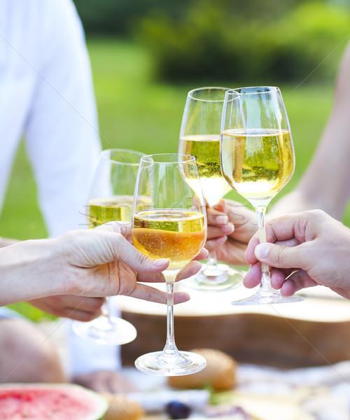 Yaz piknik beyaz şarap açık parti kutlama Stok fotoğraf © dashapetrenko