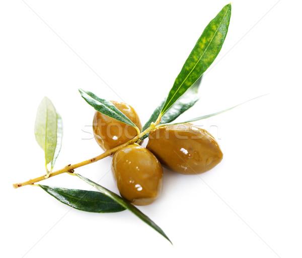 Maturo verde olive foglie bianco oliva Foto d'archivio © dashapetrenko