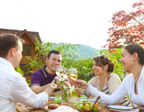 Group of happy friends toasting wine glasses in the garden  Stock photo © dashapetrenko