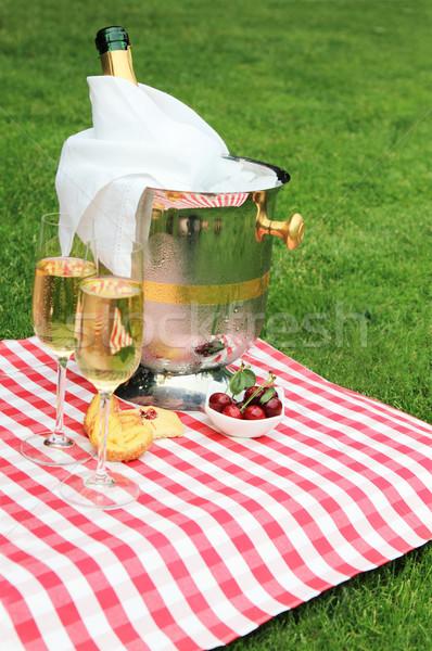 Estate picnic champagne vetro vino verde Foto d'archivio © dashapetrenko