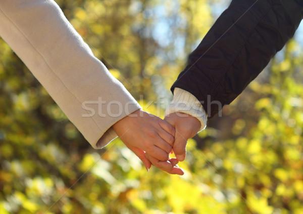 Holding handen najaar bos vrouw Stockfoto © dashapetrenko