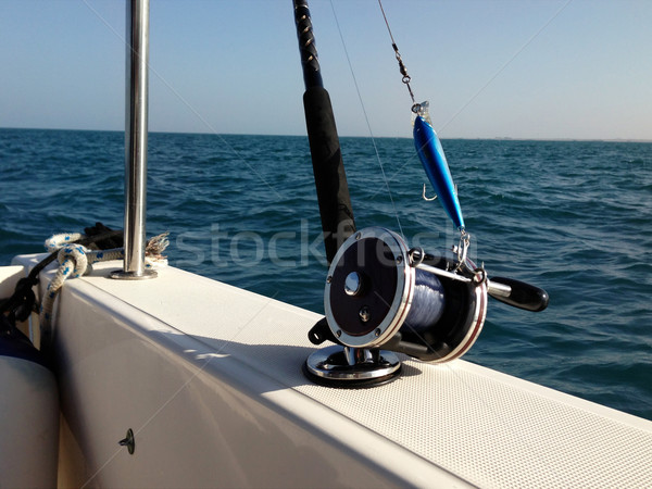 большой игры рыбалки воды рыбы морем Сток-фото © dashapetrenko