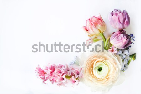 Festive invitation card with beautiful flowers  Stock photo © dashapetrenko
