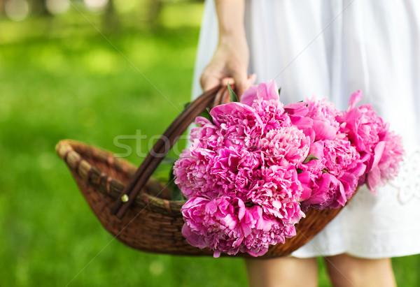 Woman holding basket of peony in her hand Stock photo © dashapetrenko
