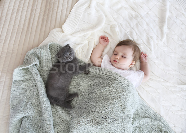 Сток-фото: портрет · красивой · спальный · ребенка · котенка