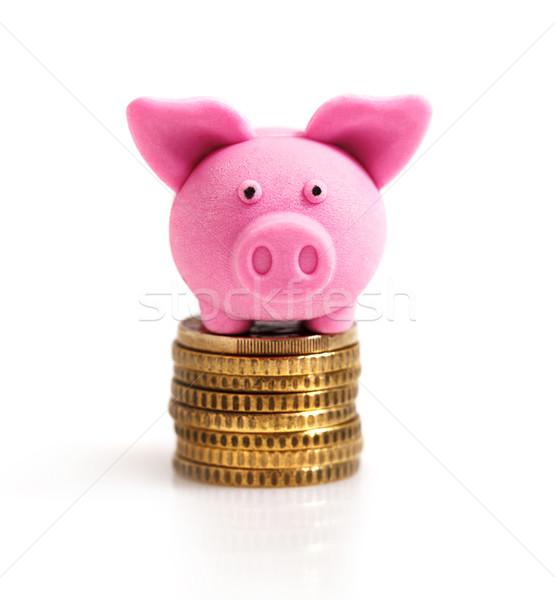 Little pink pig  on coins Stock photo © dashapetrenko
