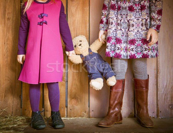 Two little sisters with toy bear Stock photo © dashapetrenko