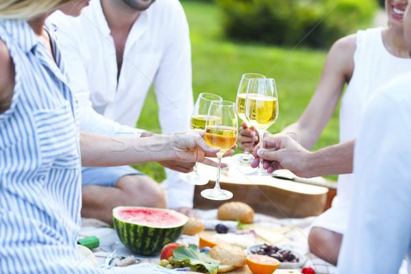 Verão piquenique vinho branco ao ar livre festa celebração Foto stock © dashapetrenko