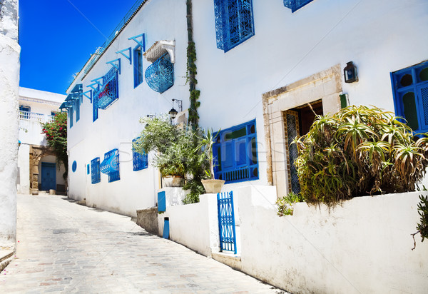 Sidi Bou Said. La Gulett, Tunisia Stock photo © dashapetrenko