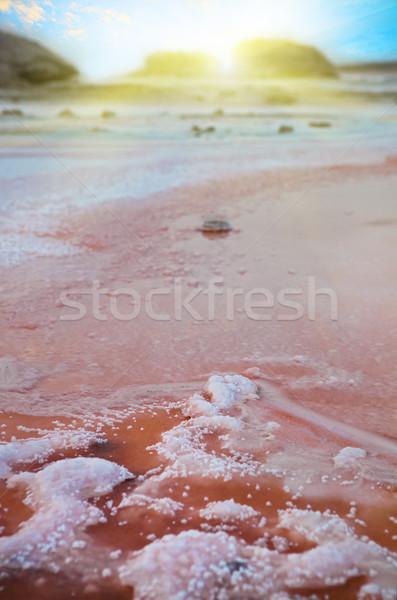 Dramático misterioso cena sal lago Tunísia Foto stock © dashapetrenko