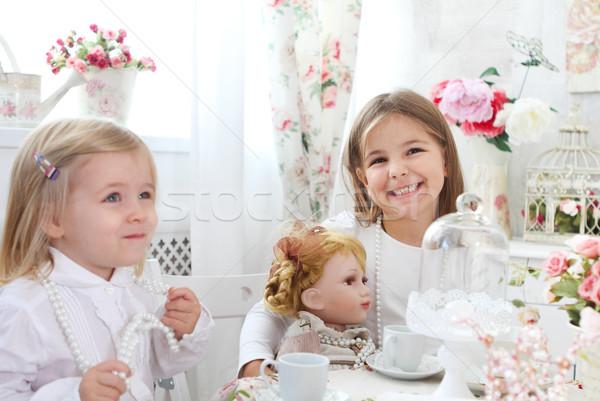 Two little cute sisters playing  Stock photo © dashapetrenko