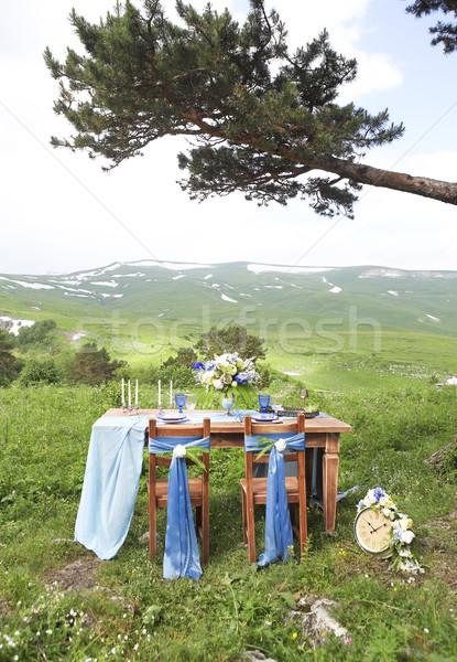 Outdoors table set for dinner, close up  Stock photo © dashapetrenko