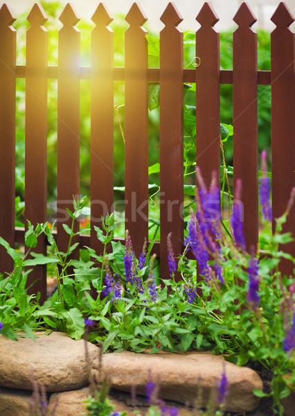 Wooden fence over the courtyard Stock photo © dashapetrenko