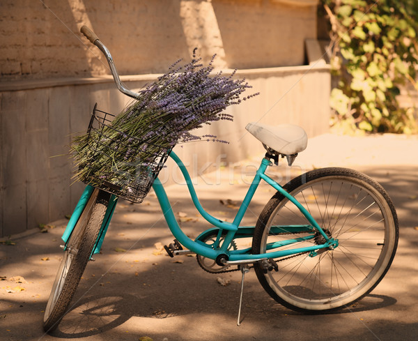 Vintage bycycle with basket with lavender flowers Stock photo © dashapetrenko