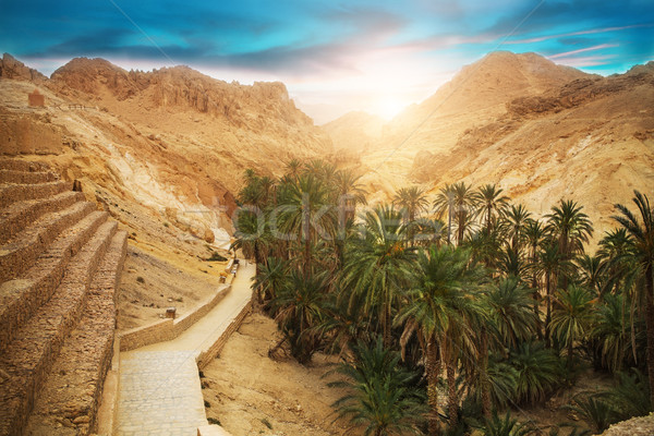 Mountain oasis Chebika, Sahara desert, Tunisia, Africa Stock photo © dashapetrenko