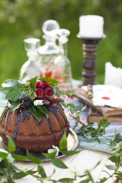 Gâteau au chocolat décoré fleurs vert clair espace de copie nature Photo stock © dashapetrenko